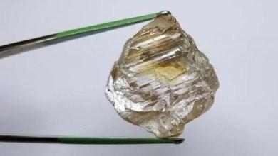 Photo of Diamantes da Mina do Lulo com preço médio 15 vezes acima do preço do mercado