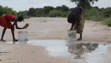 Photo of Cunene – Mais de 1500 pessoas abandonaram o Curoca nos últimos dias por causa da fome – Município continua a ser o epicentro da seca no sul do pais