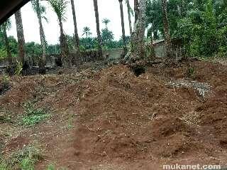 Land preparation for planting cassava