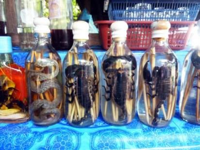 Laos, Luang Prabang, liqueur de scorpion