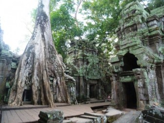 Cambodge, Temple d'Angkor TA PROHM