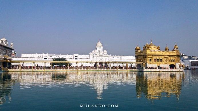 Amritsar, le Temple d'or des Sikhs, appelé aussi Darbar Sahib