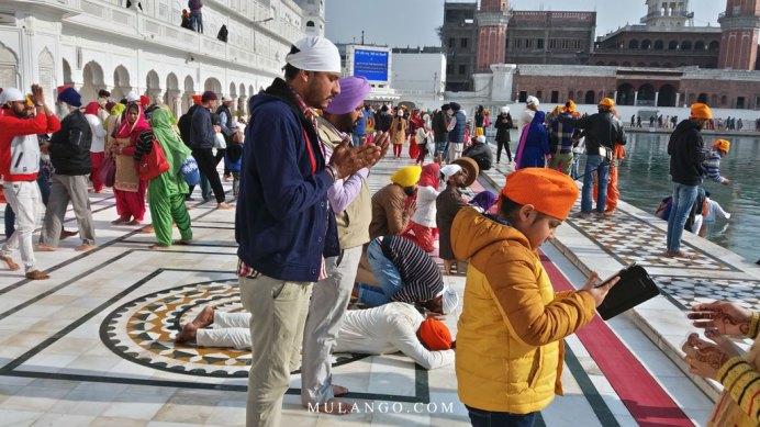 Amritsar, Les Sikhs se prostèrnent devant le Temple d'Or