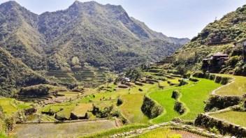 Les rizières en terrasse de Batad-Banaue au Philippines