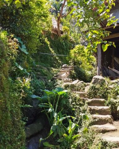 A Batad, aux Philippines, voici les escaliers qui vous mèneront au village sur un dénivelé de 200mètres