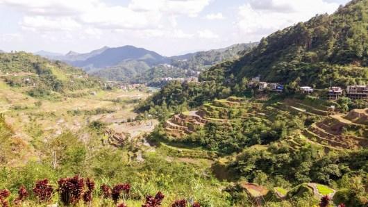 Les murets des rizières de Banaue aux Philippines, sont en terre
