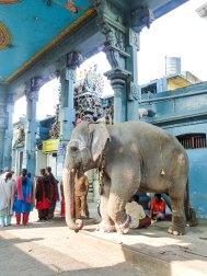 Lakshmi vous bénit le Temple Manakula Vinayagar