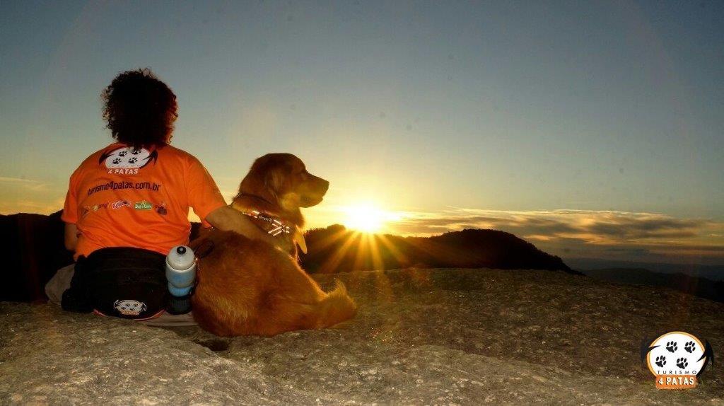 Pet Friendly: Mais que um conceito, um estilo de vida