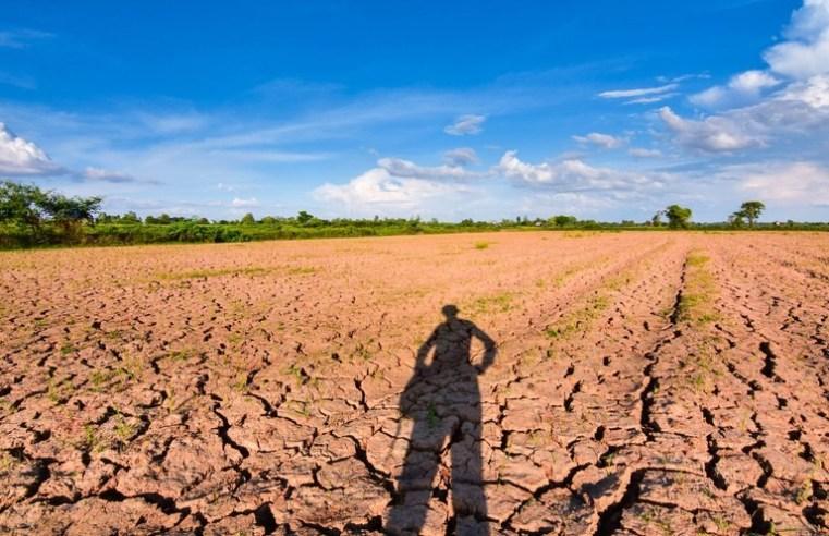 #03 – Contra a fome e a seca rural: Estratégias que mudaram vidas