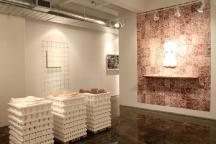 Exposição The Antrophocene, de Sara Kriendler (Maio 2015), no espaço 2 da galeria A.I.R.