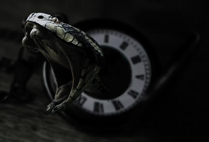 تفسير حلم لدغة الثعبان في اليد 2021 موقع ملخص