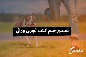 تفسير حلم كلاب تجري ورائي