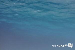 غرق السيارة في البحر في المنام