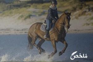تفسير حلم الركوب على الحصان
