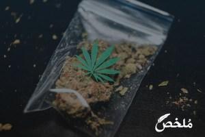تفسير حلم المخدرات والشرطة