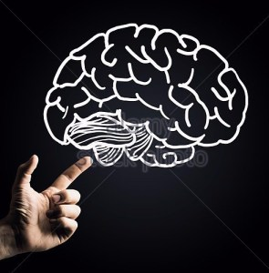 human-hand-pointing-with-finger-at-brain-icon-fdf28b