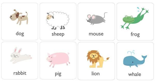55 животных на английском для детей с произношением