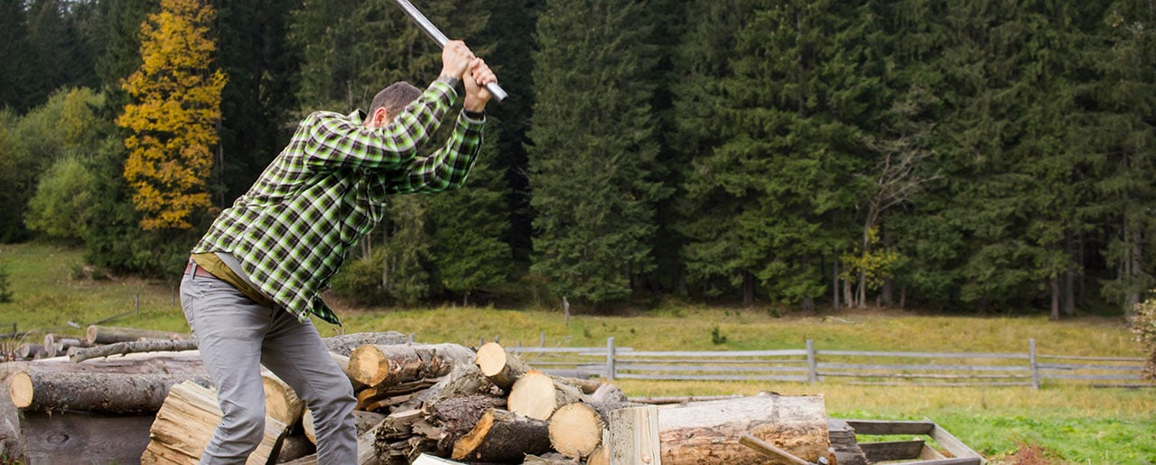 Assurance Terre à bois