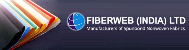Fiberweb India Multibagger