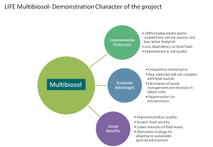 Objectives, Multibiosol project
