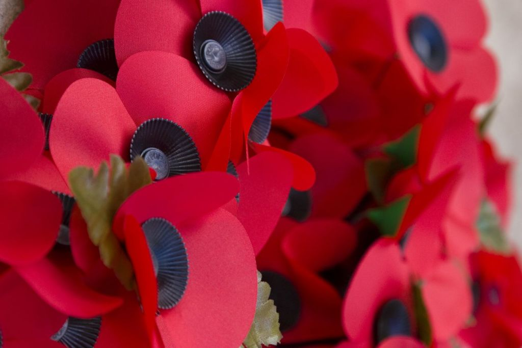 Remembrance Day, Poppy Day (Fot. Donna Rutherford / Flickr)