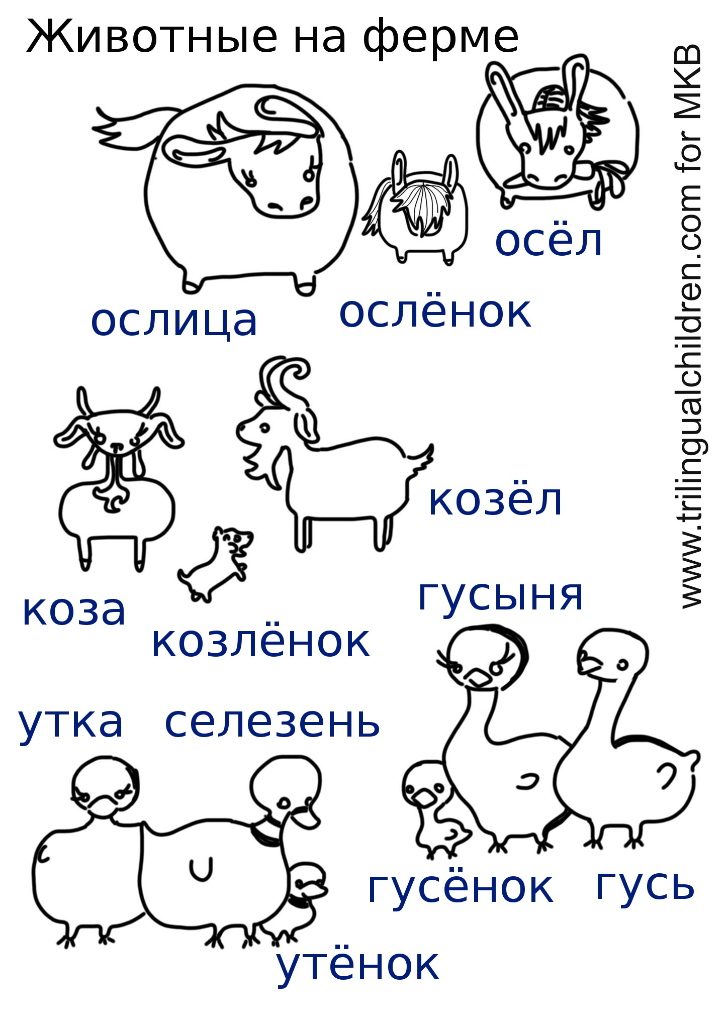 Multilingual Animal And Babies Printables