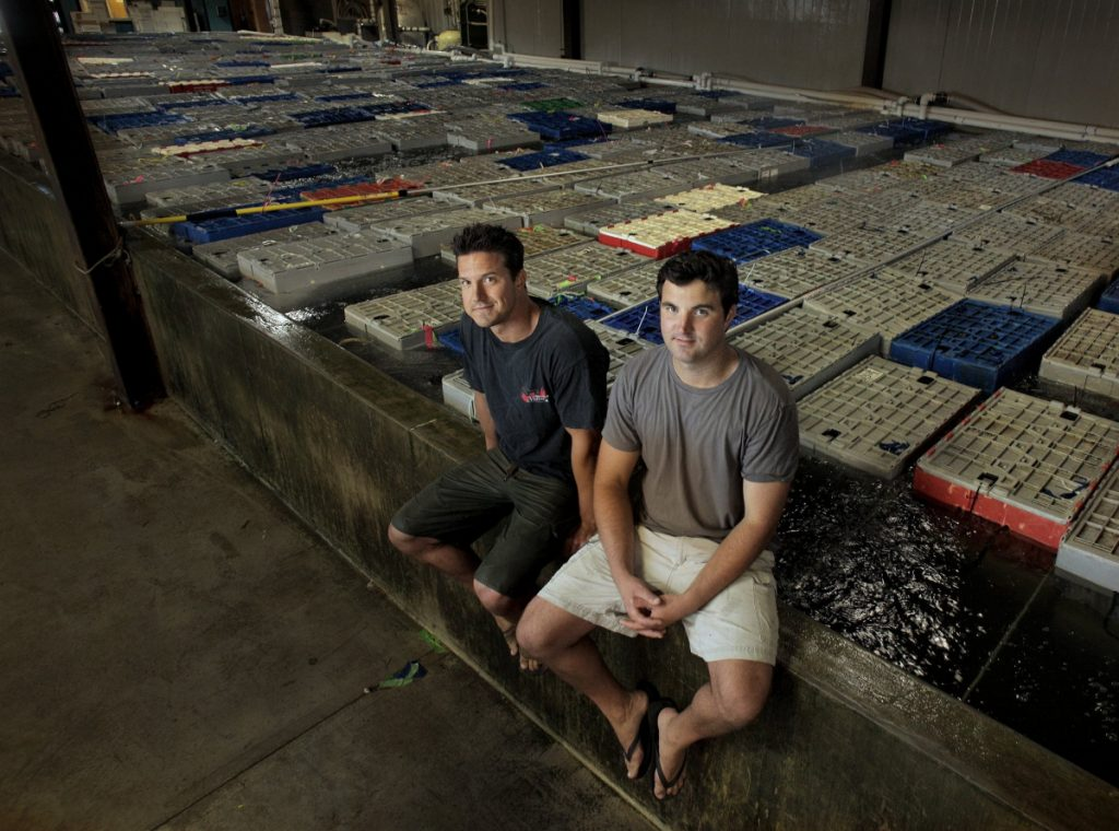 Brothers Brendan Ready, left, and John Ready are co-owners of Ready Seafood. Recently, the company and its Canadian partner, Premium Brands, acquired a lobster processor in Nova Scotia.