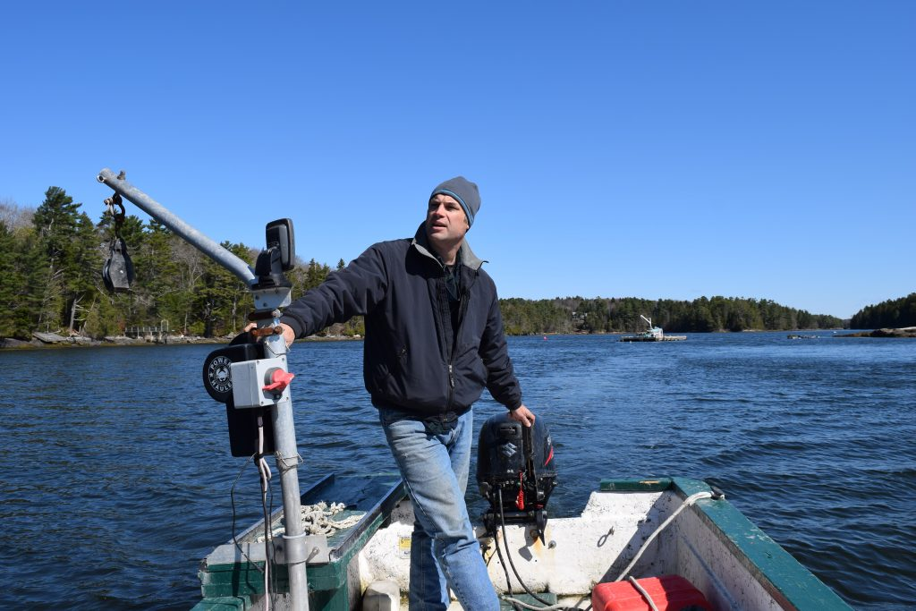 Peter Rand heads back to land after checking on his aquaculture leases near Hopkins Island.