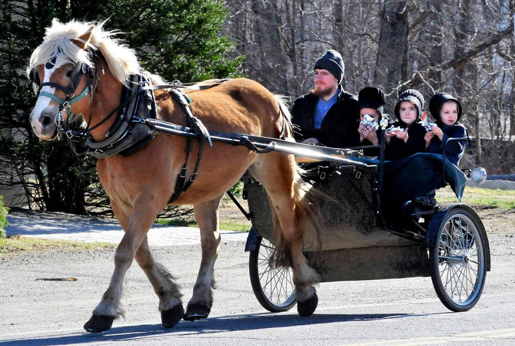 An Amish man guides his horse and buggy loaded with kids through Unity lin 2016.