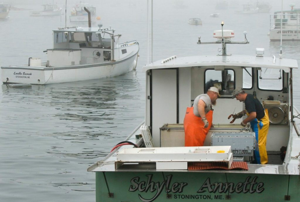 Joe Woods, left, and Ryan Dorr transfer lobsters into a crate aboard Dorr's boat, the Schyler Annette, at Greenhead Lobster in Stonington. The Maine Lobstermen's Association is opposing a state plan to protect endangered right whales because it is too extreme for the negligible risk Maine lobstering poses to the whales.