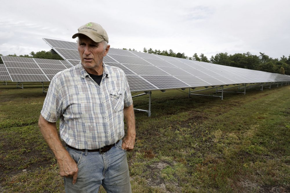 Cranberry grower Dick Ward, of Carver, Mass., stands near a solar array in a cranberry bog on his farm in Carver this month. The revenue that solar power offers has been helpful to farmers as the price of cranberries has dipped in recent years.
