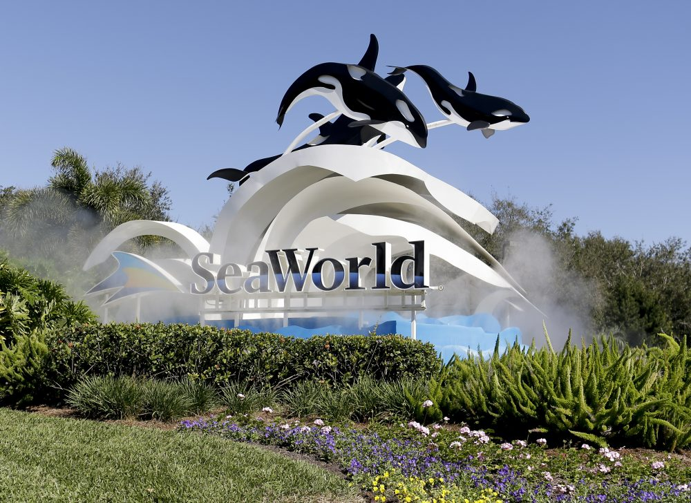 "The entrance to SeaWorld, in Orlando, Fla.  SeaWorld Entertainment Inc. on Tuesday, Feb. 11, 2020,  agreed to pay $65 million to settle a lawsuit in which the theme park company was accused of misleading investors over the impact the documentary ""Blackfish"" was having on its bottom line."
