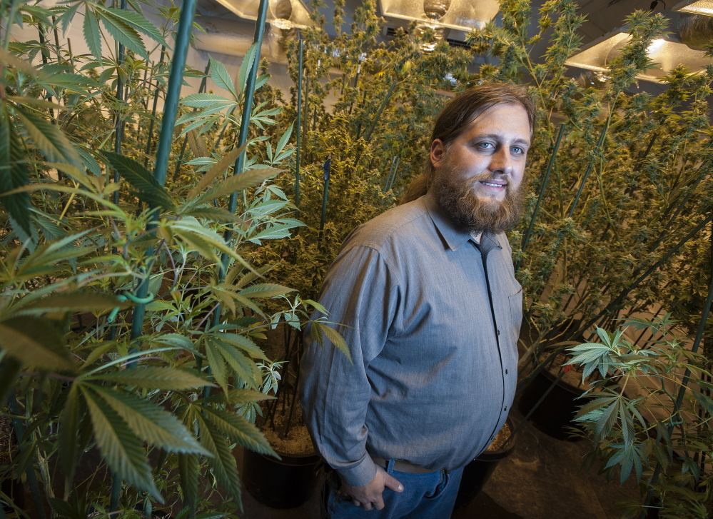 Paul McCarrier, president of Legalize Maine, shown here in 2014, said his group has raised about $30,000 so far as part of an effort to legalize recreational use of marijuana in Maine.