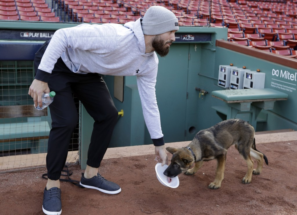 Porcello gives water to his four-month-old puppy Bronco.