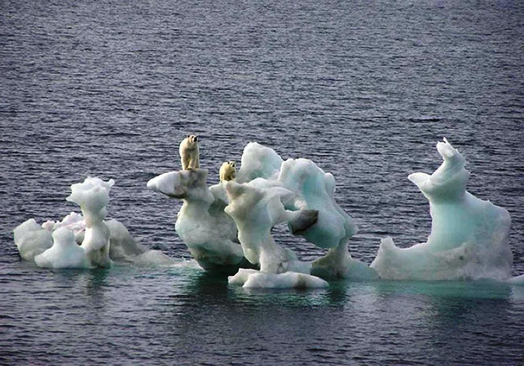 The Associated Press Two polar bears are shown on melted ice off Northern Alaska in 2004. Readers disagree over the extent of climate change.