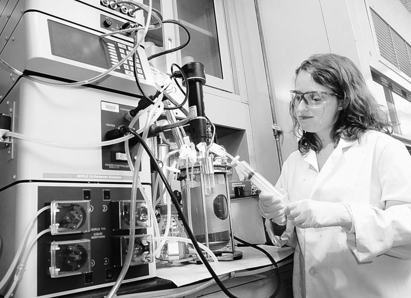 Programs like this University of Maine biofuels project will need backing from the federal government if our scientists are going to get ahead of ever tougher global competition.