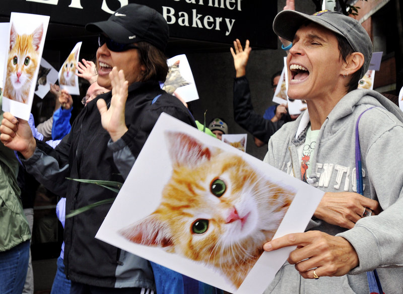 Lisa Arellano, left, and Carleen Mandalfo, both of Portland, sing to promote cat adoption during Wednesday's flash mob. The Animal Refuge League has 360 cats and kittens awaiting adoption.