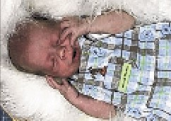 Ethan Henderson was 10 weeks old when he died of brain injuries. His father was accused of causing the injuries. Contributed photo