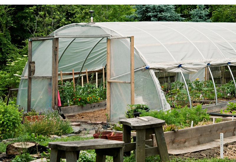 This greenhouse will be part of the tour at Maureen Costello's house in Portland.