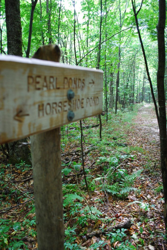 The Appalachian Mountain Club turned old hard-to-find footpaths to wild brook trout waters into easy-to-navigate trails to help guests find choice fishing holes.