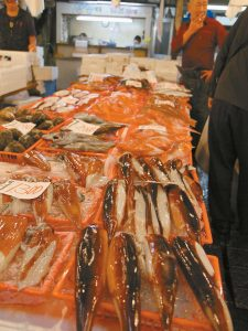 IN THE ABOVE PHOTO, fish are shown on display at the Tsukiji fish market in Tokyo. Tsukiji is the biggest fish market in the world, and tourists willing to line up well before dawn can view the rapid-fire auctions where the giant fish are sold.