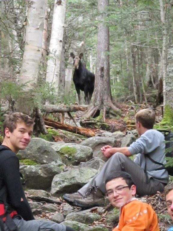 Nate Skvorak, right, watches a moose with Josh Richardson, left, and Jack Brockelmanc. The sighting was a treat on the expedition.