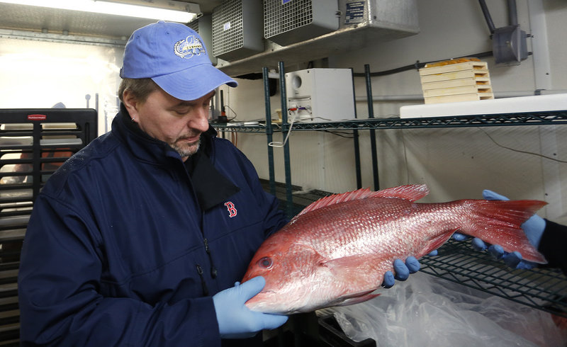The chef's day is always filled with activity. Harding Lee Smith shops for fish recently at Browne Trading Co. in Portland.