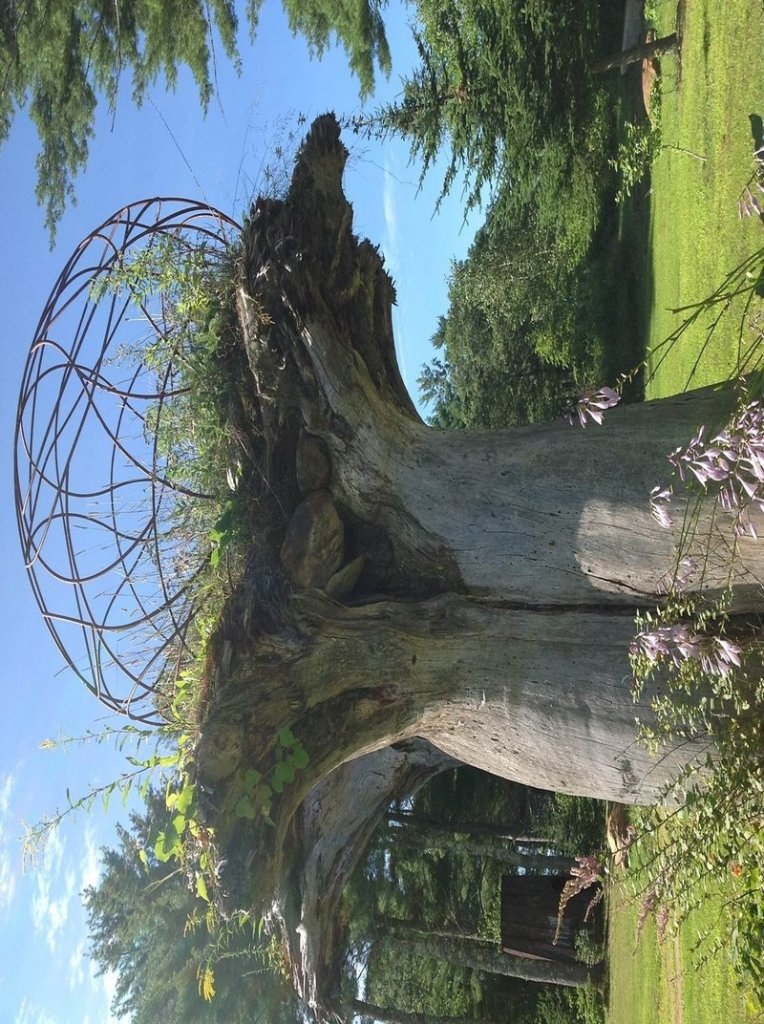 """Jay Sawyer has dotted his property in Warren with the sculptures that he creates from salvaged materials, including """"Keebler Tree."""""""