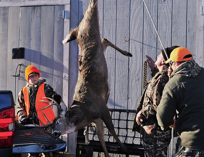 A handsome buck is weighed prior to being tagged at Eldridge Lumber off Route 1 in York, one of Maine's southern communities that autumn after autumn enjoys a productive deer-hunting season.