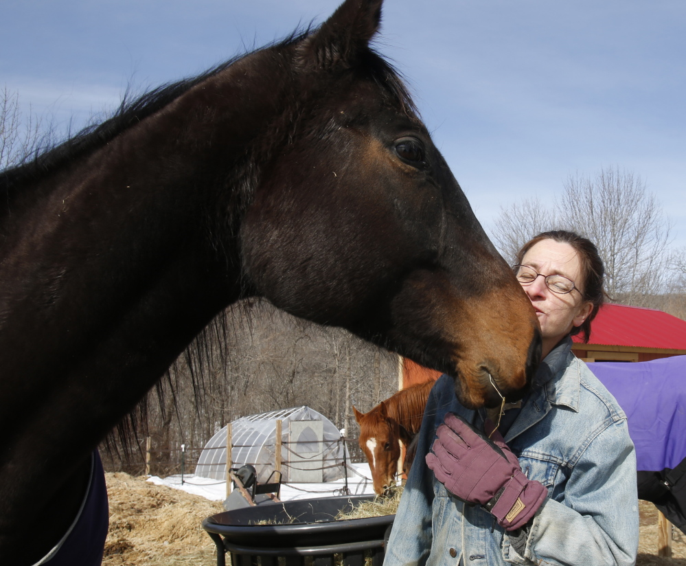 Elizabeth Dickerson talks to Graduate, a thoroughbred she rescued from Maryland over a year ago. Dickerson rescues horses, rehabilitating and training some on her Rockland farm and finding homes for others.