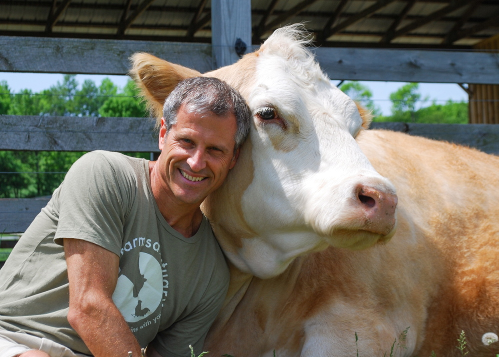 """Farm Sanctuary president and co-founder Gene Baur with a cow named Meg who was rescued and now lives in Watkins Glen, New York, at one of three shelters run by the nonprofit. Below, Baur's book, """"Farm Sanctuary: Changing Hearts and Minds About Animals and Food."""""""