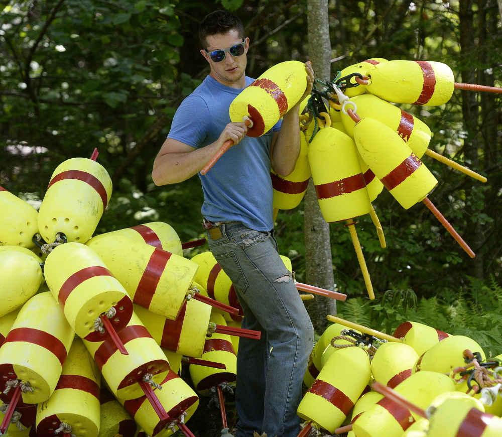 """Lobsterman Cyrus Sleeper hoists buoys from his yard in South Thomaston to load into a pickup truck as he gets ready for the lobster season. Sleeper's optimistic about the fishery this year, even though it's one to two weeks behind schedule. """"The later they shed, the better the quality,"""" he said."""