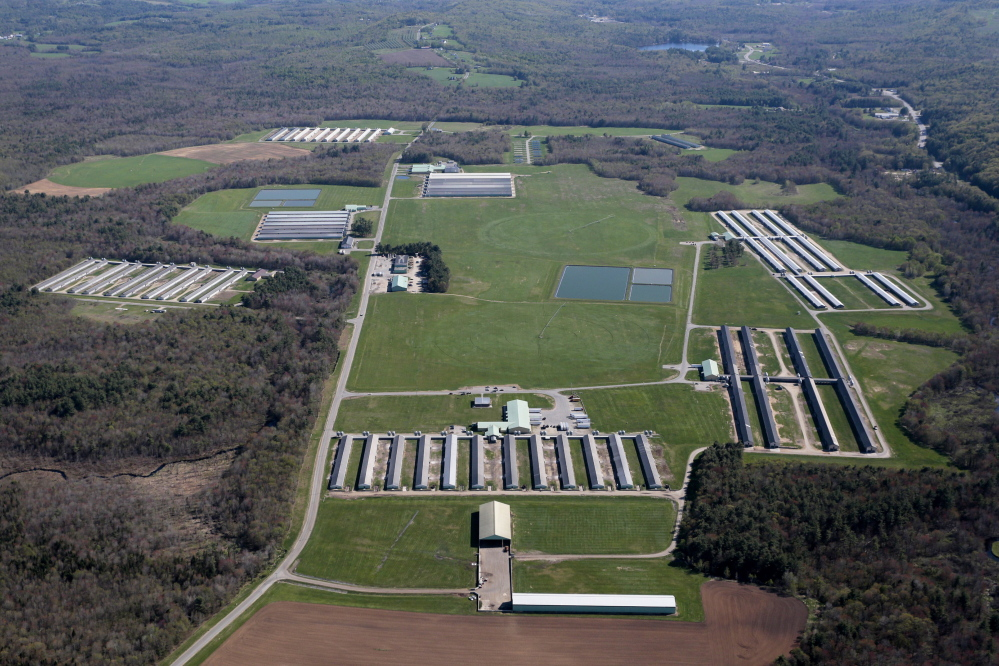 Quality Egg Farm in Turner, one of three Maine egg operations purchased recently by Hillandale Farms, was once owned by Jack DeCoster.