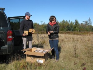 Ben Algeo and Suzanne MacDonald from the Island Institute unload boxes of LED light bulbs for delivery to residents of Matinicus Island, part of a program to help residents save money in a remote community with Maine's highest electric rates. Tux Turkel photo